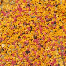 Pollen frais de fleurs sauvages