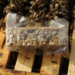Barre aux graines pur miel